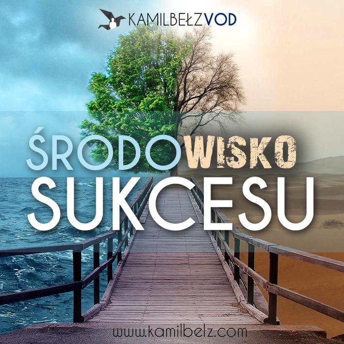 6.-Środowisko-sukcesu
